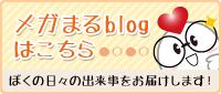 メガまるブログ