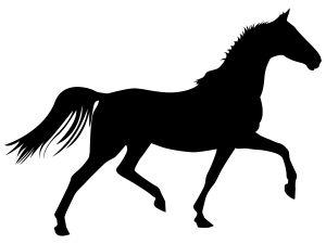1134377_trotting_horse